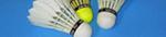 TV Markt Schwaben – Badminton